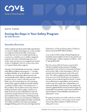 seeng-safety-gap-wp