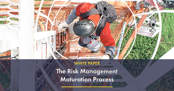wp-The Risk Management Maturation Process